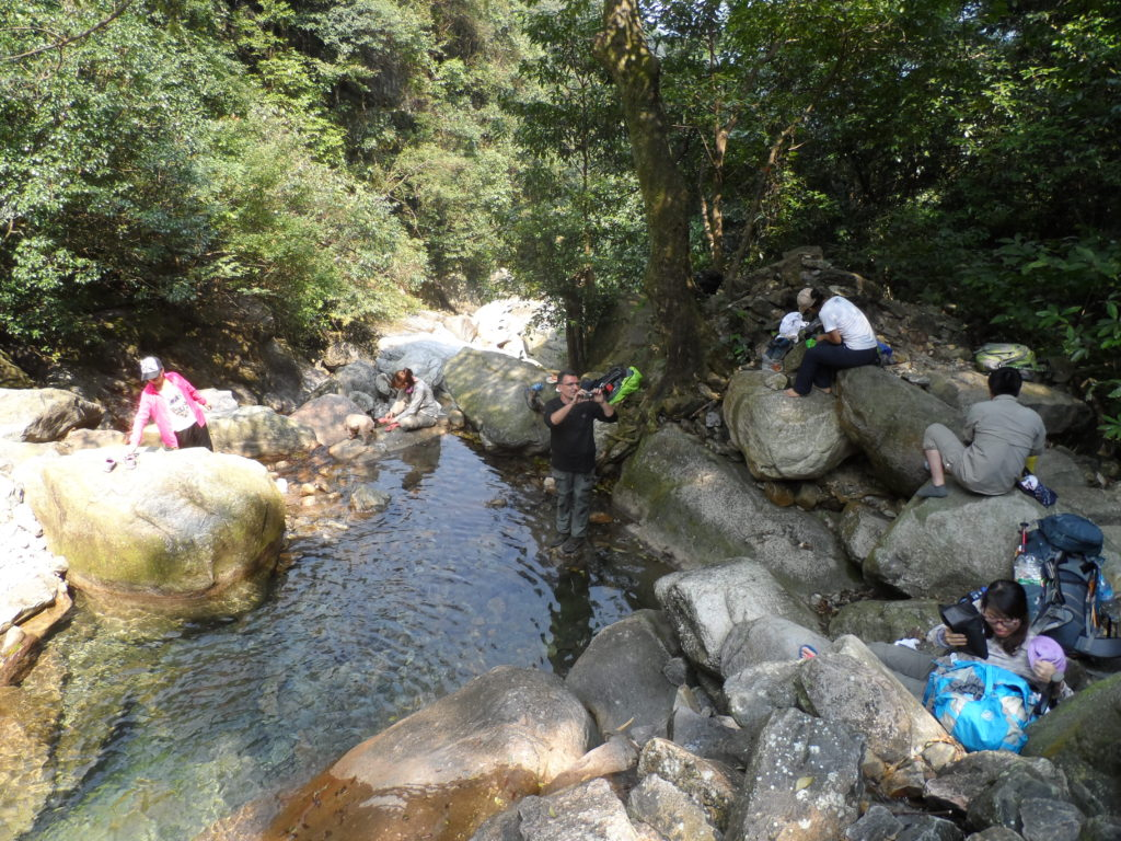 Luokeng river source, Chuandiding mountain, North Guangdong