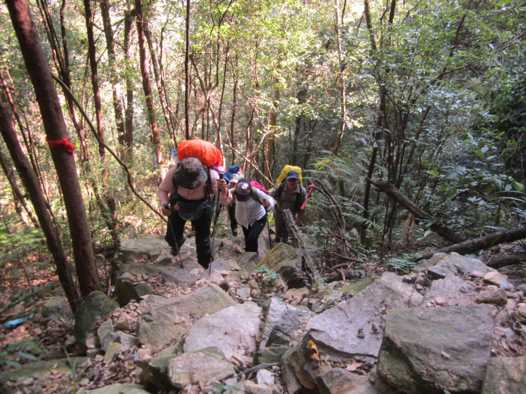 Hiking in the forest, Chuandiding mountain, North Guangdong
