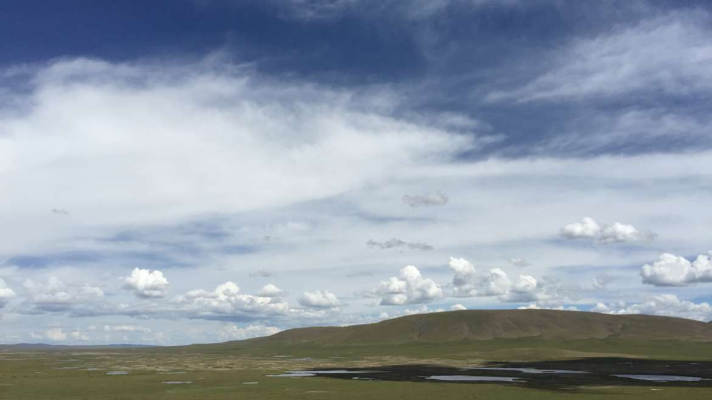 China, Tibet, Madoi county grassland