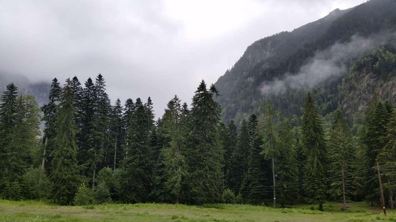 Kirilova polyana, Rila mountain, Bulgaria