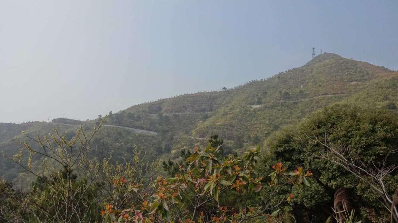 Bapian Peak in Bijiashan, Qingyuan