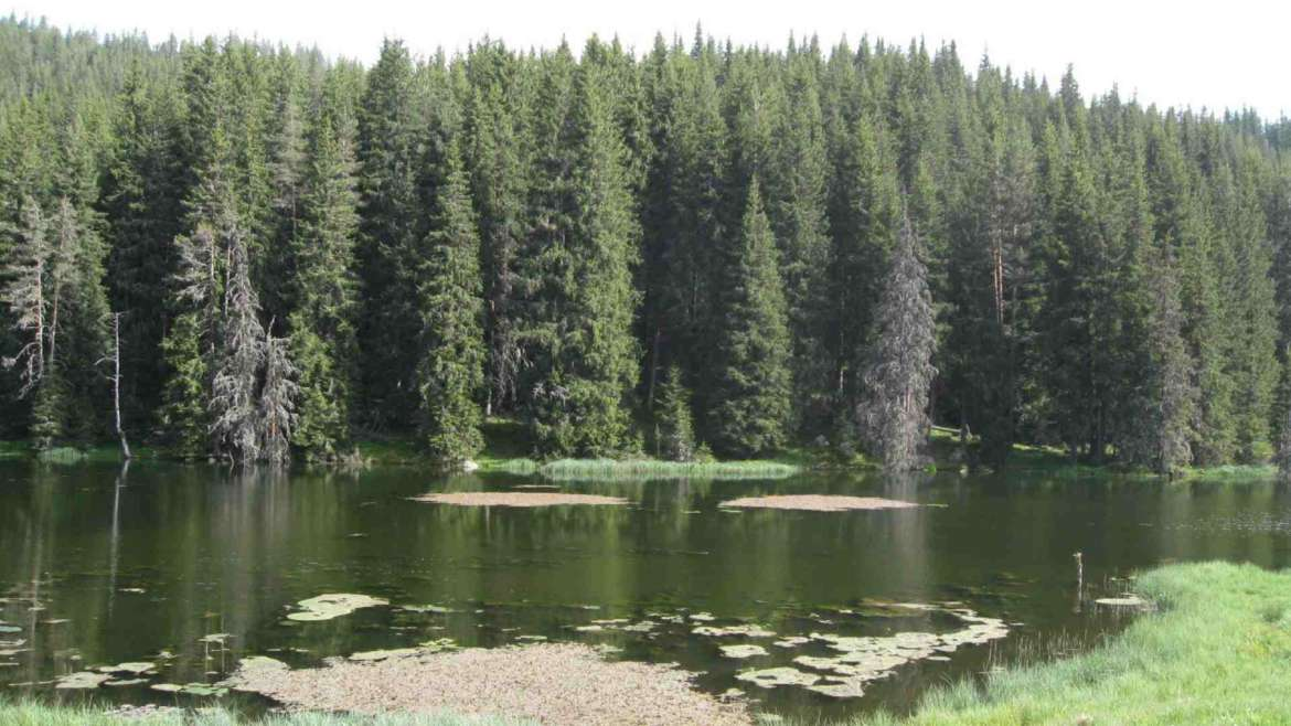 Chukura lake, Rhodope mountains