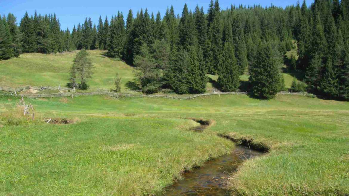 Cherno dere meadows, Rhodope mountains