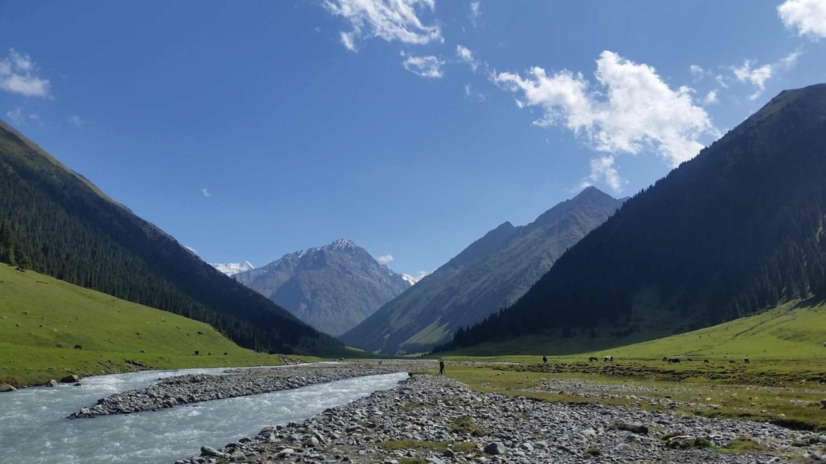 Alpine valley with coniferous forests, Tianshan