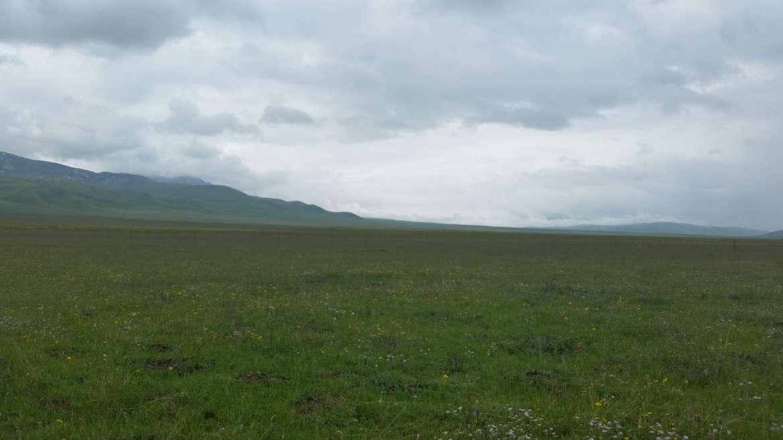 Eastern Tibet, Sichuan, Zoige/Ruoergai grassland