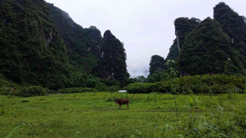 Yingxi Limestone Hills- Guanying valley