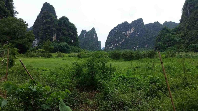 A landscape of Yingxi Limestone hills area
