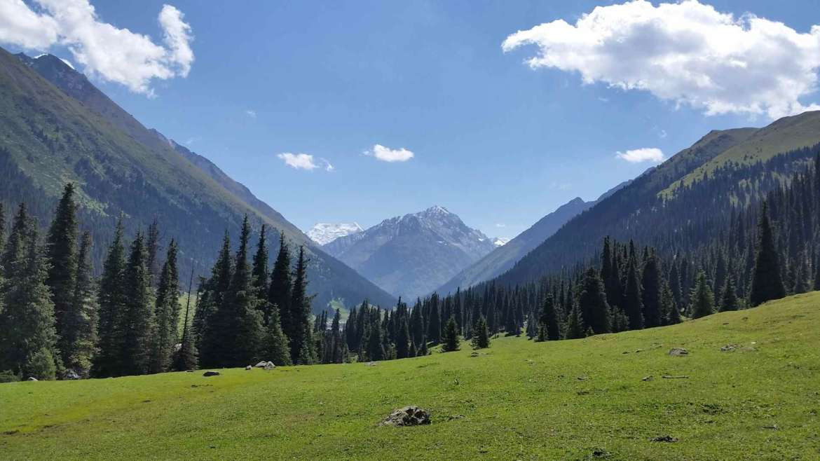 Forest, meadows and peaks, south of Altyn Arashan, Kyrgyzstan, Tianshan