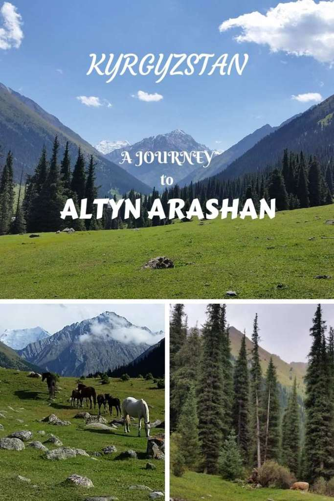 Make a journey to Altyn Arashan, Kyrgyzstan, in Tianshan mountains- an incredibly beautiful mountain landscape with coniferous forests, meadows, valleys and peaks!