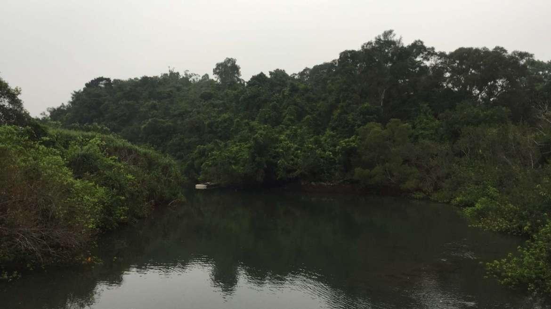 A wild lagoon type of river mouth in Sai Kung, Hong Kong