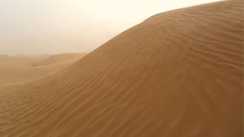 A dune in Taklamakan Desert