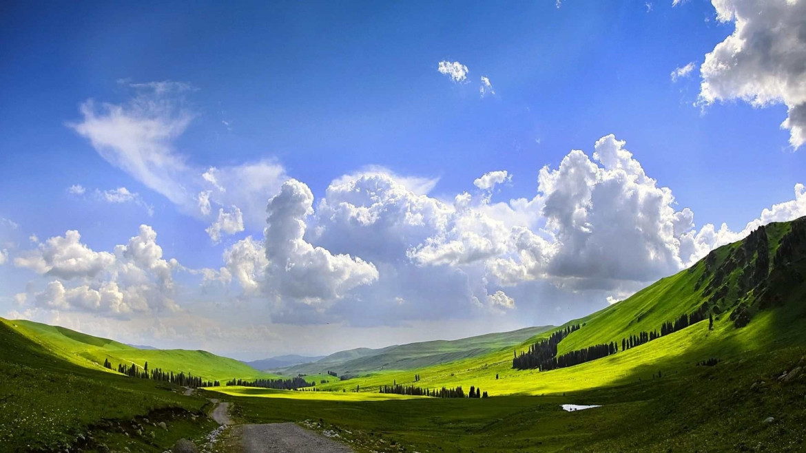 Xinjiang travel- a grassland in Tianshan Mountains