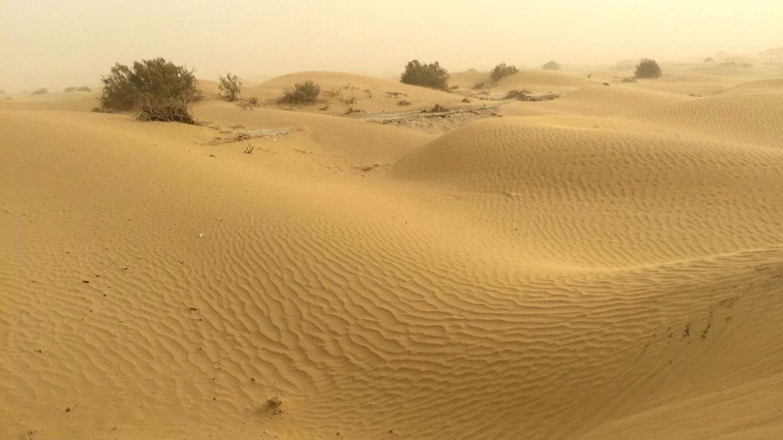 At the edge of Taklamakan Desert
