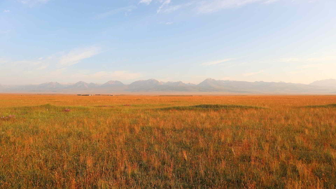 Early morning in Bayan Bulak Grassland
