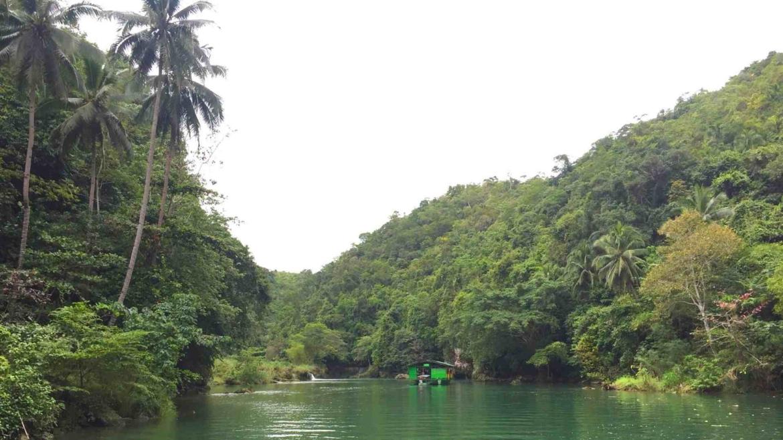 Tropical rainforest around Loboc River