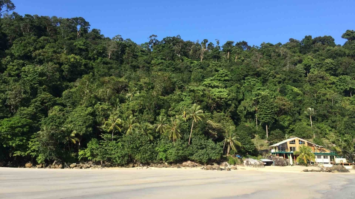 Beach and rainforest on Tioman Island