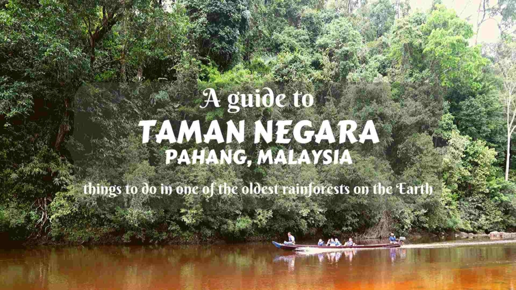 A guide to Taman Negara in Pahang, Peninsular Malaysia- things to do in one of the oldest rainforests on the Earth