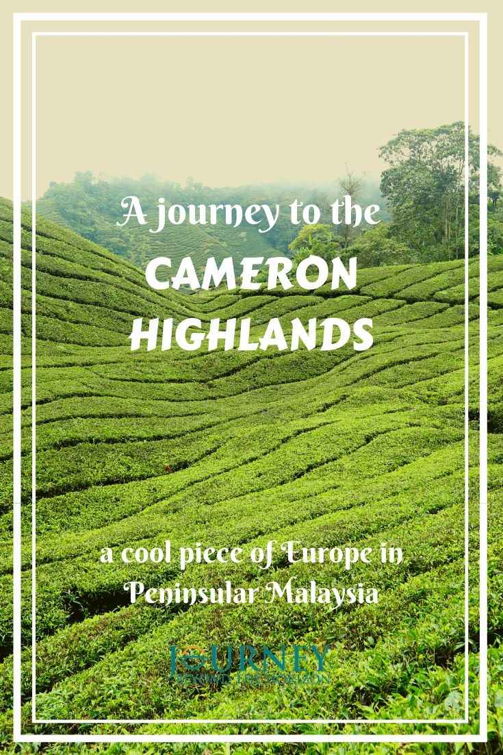 Make a journey to the Cameron Highlands- a cool piece of Europe in the heart of Peninsular Malaysia