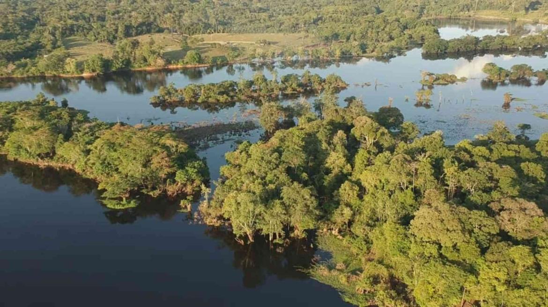 Amazonia landscape