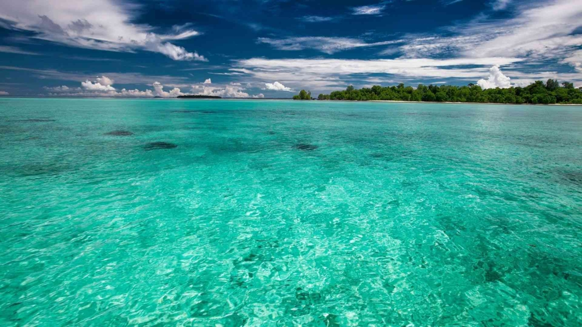 Tropical paradise on the Equator around the eastern islands of Indonesia
