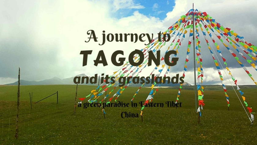 A journey to Tagong and its grasslands- a green paradise in Eastern Tibet, China