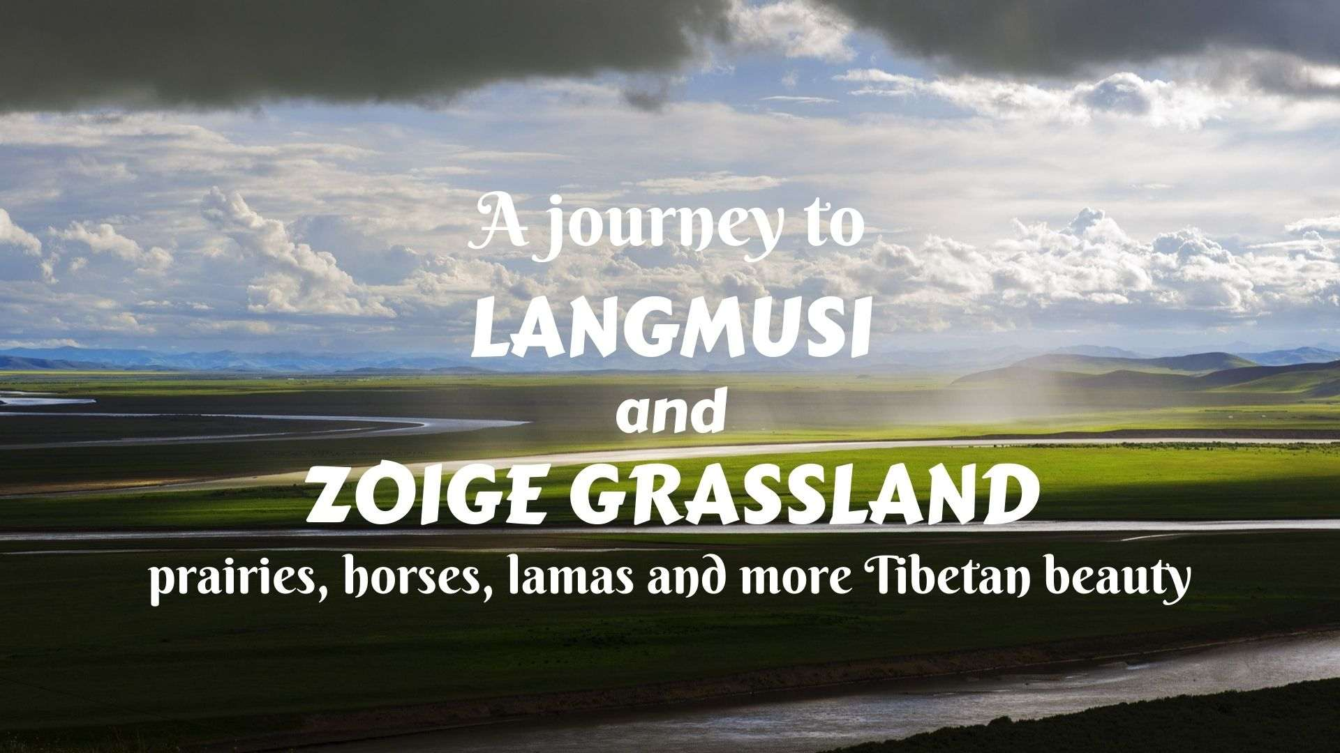 A journey to Langmusi (Taktsang Lhamo) and Zoige Grassland- prairies, horses, lamas, and more Tibetan beauty